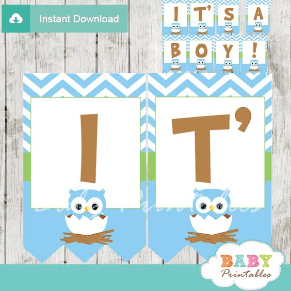 printable blue owl personalized baby shower banner