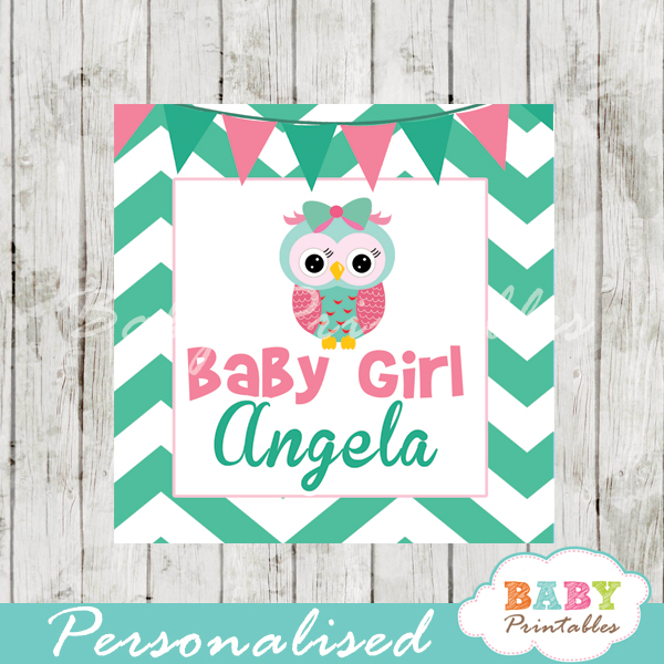 baby girl pink and mint green owl printable chalkboard baby shower gift labels
