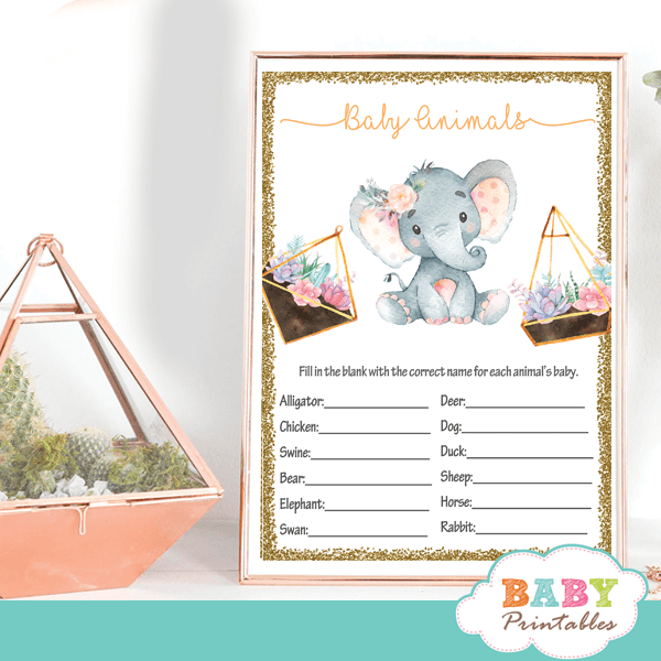 terrarium succulent elephant baby shower games cactus flowers ideas peach pink gray girl